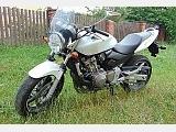 Honda HORNET CB 600 фото